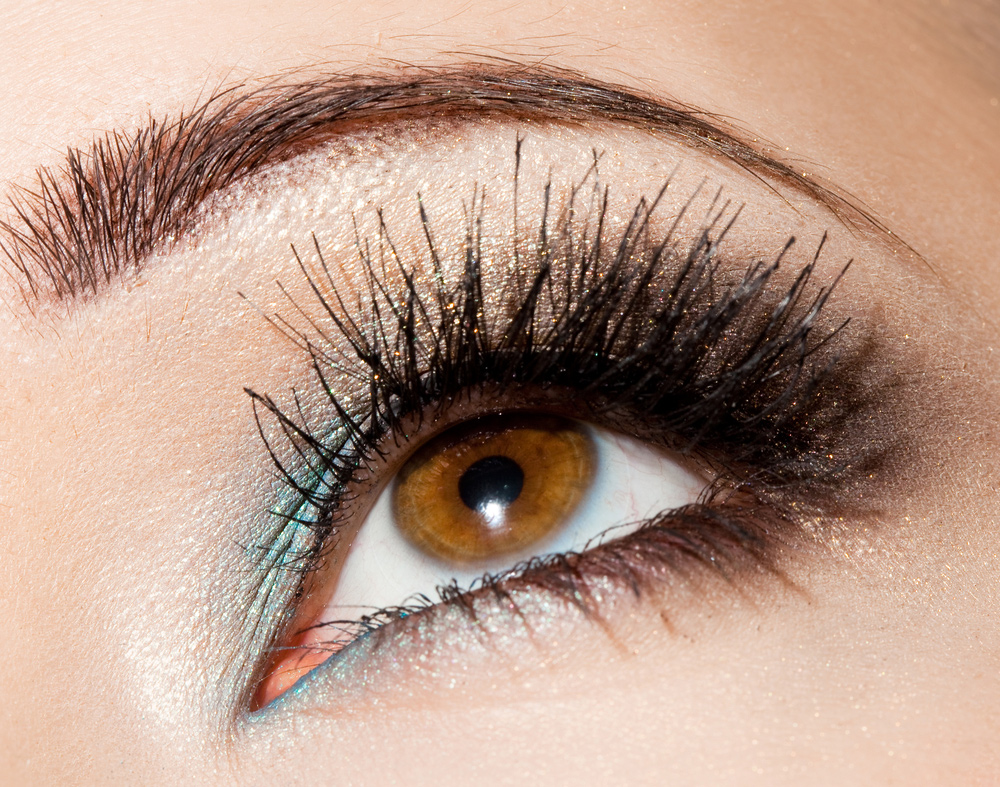 Brow and Lashes